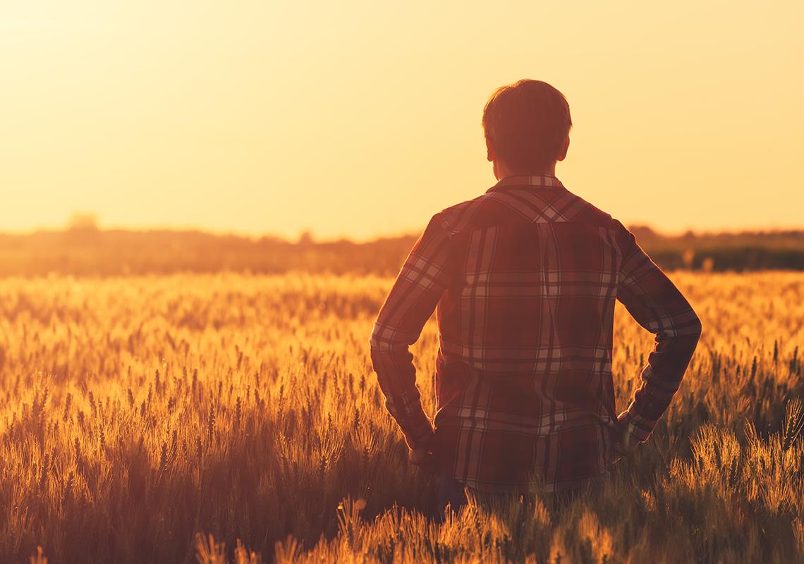 Reliable Farm Insurance   Smallholding Insurance   F&G